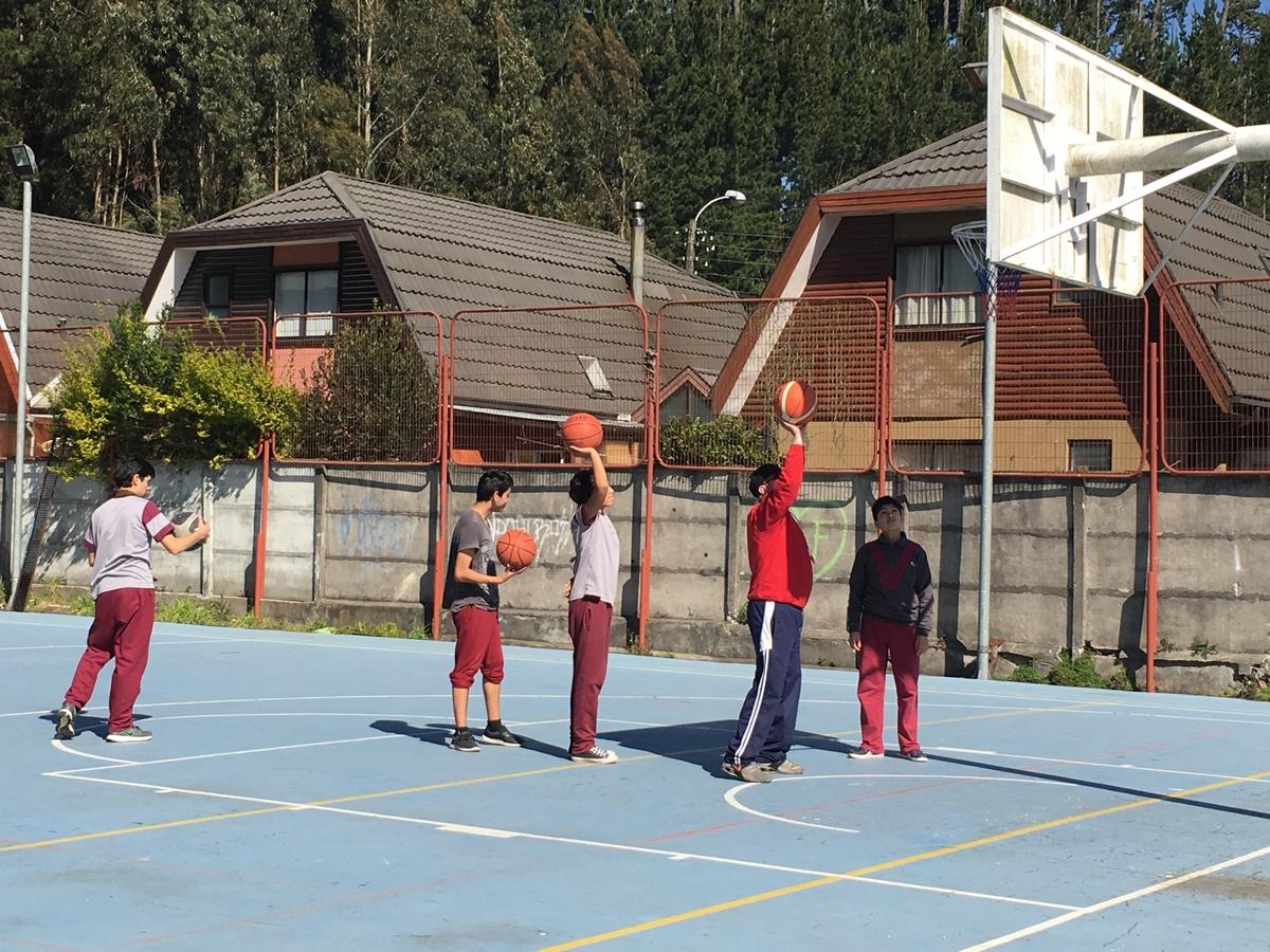 ACLE - Basquet (1)